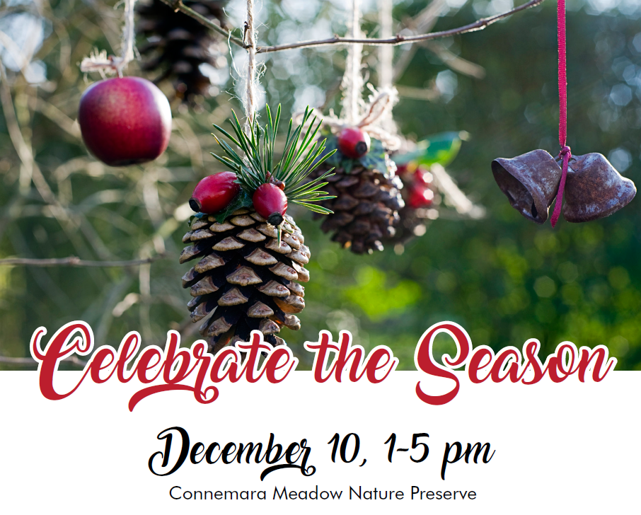 Celebrate the Season in the Meadow