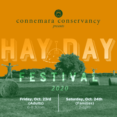 Hay Day Festival Connemara
