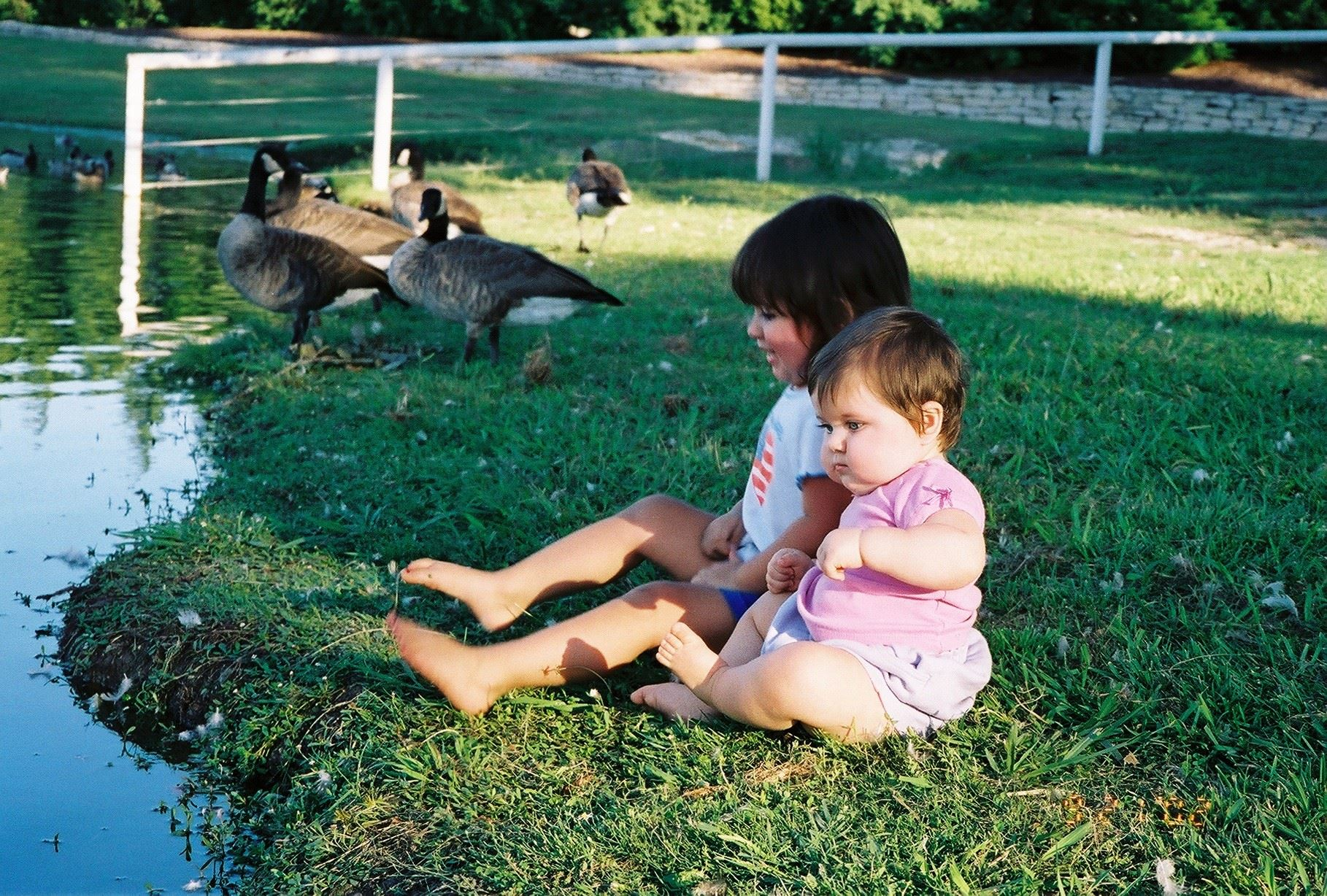 bethany -lakes-babies-by-ducks