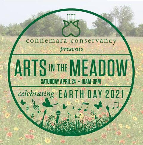 Connemara Art in the Meadow