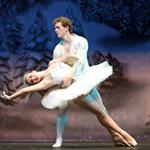 Allen Civic Ballet company performs The Nutcracker each December and participates in an extensive number of performances around Allen in the spring.